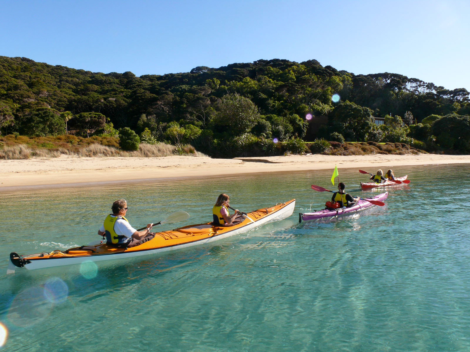kayaking, bay of islands