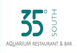 35 degrees logo