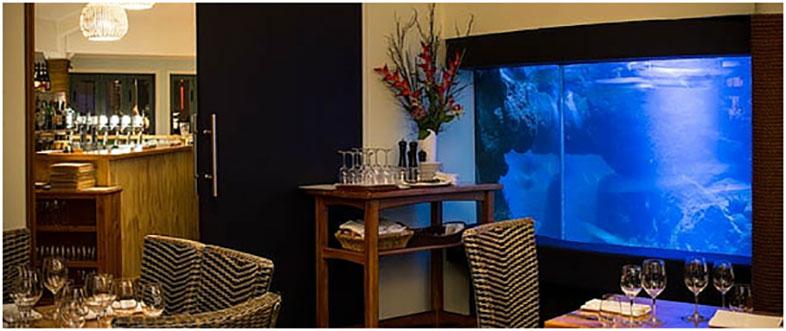 35 Degrees South Restaurant, Aquarium & Bar - Bay of Islands