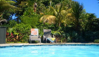 88 Lodge, Kerikeri Poolside