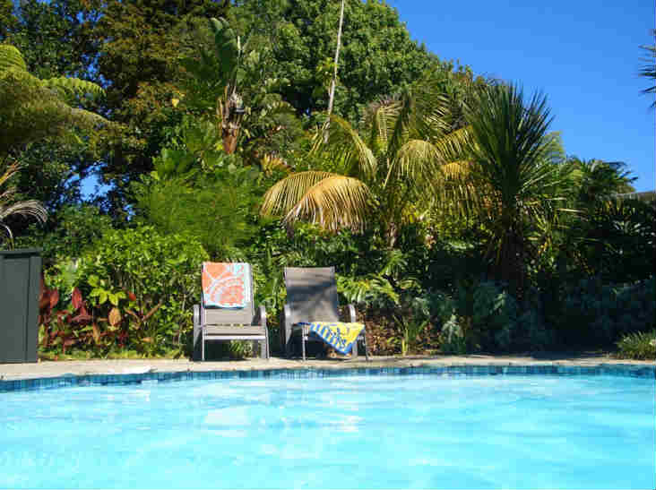 88 Lodge Kerikeri Poolside