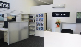 Bayleys Real Estate - Visit BOI - Featured Image