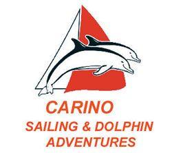 Carinonz logo