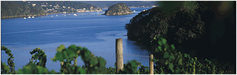 Omata Estate - Bay of Islands