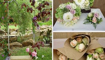 Paradise Florists Flowers