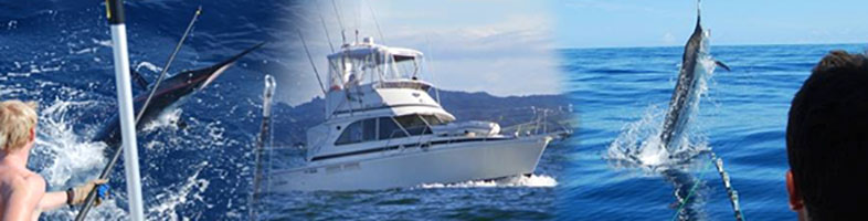 Saltshaker Fishing Charter - Bay of Islands