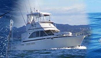 saltshaker fishing charters