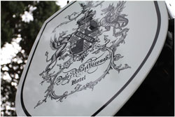 the duke of marlborough logo