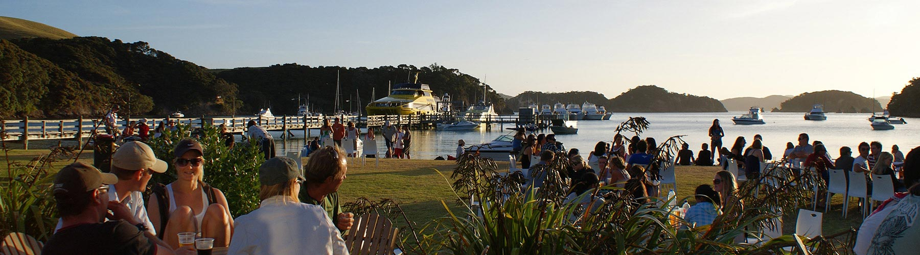 Things to do at the Bay of Islands