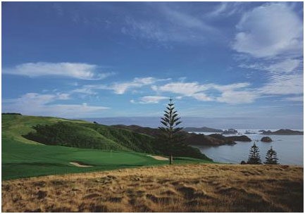 Kauri Cliffs View