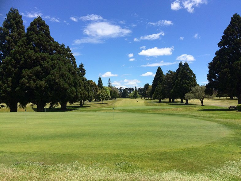 Golf Green Club Kerikeri