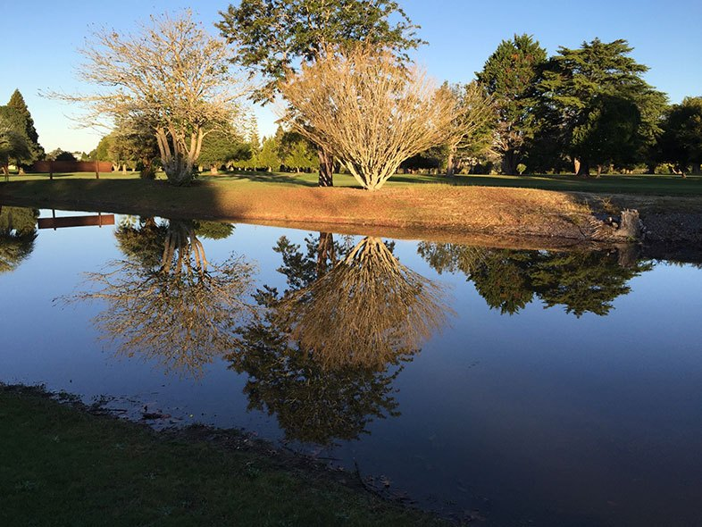 Golf Club Kerikeri Pond