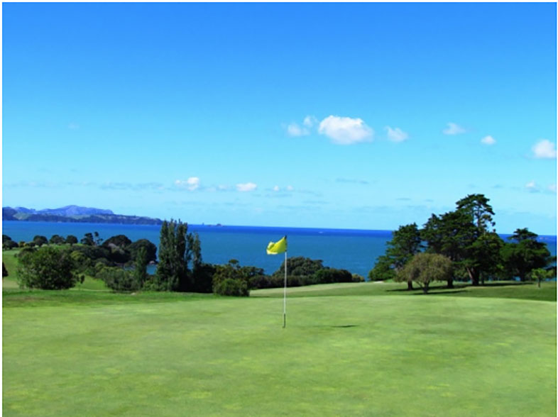 Waitangi Golf Club Hole in One