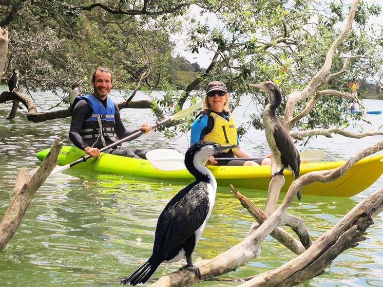 boi kayak cruise