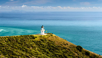 Cape Reinga Tour
