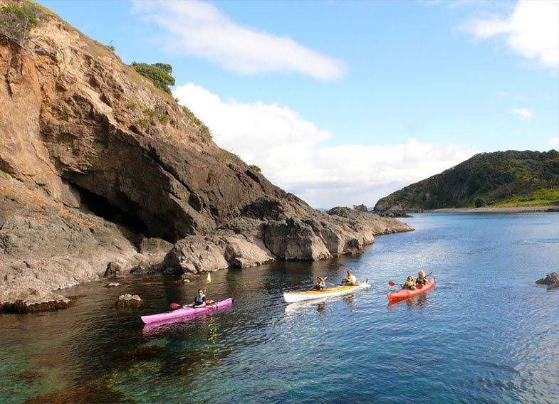 Group Kayaking in Bay of Islands
