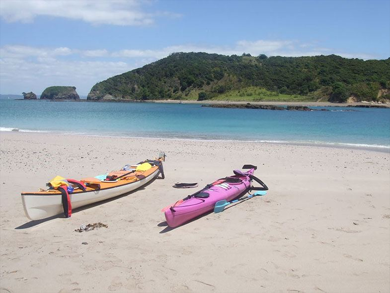 Kayaks on beach in Bay of Islands - Coastal Kayakers Tour