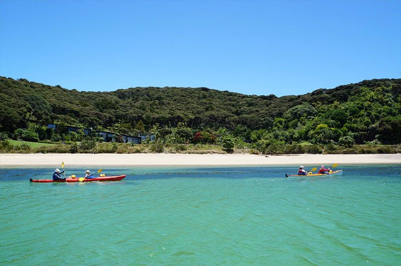 Low tide at Bay of Islands