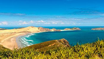 Discover Cape Reinga