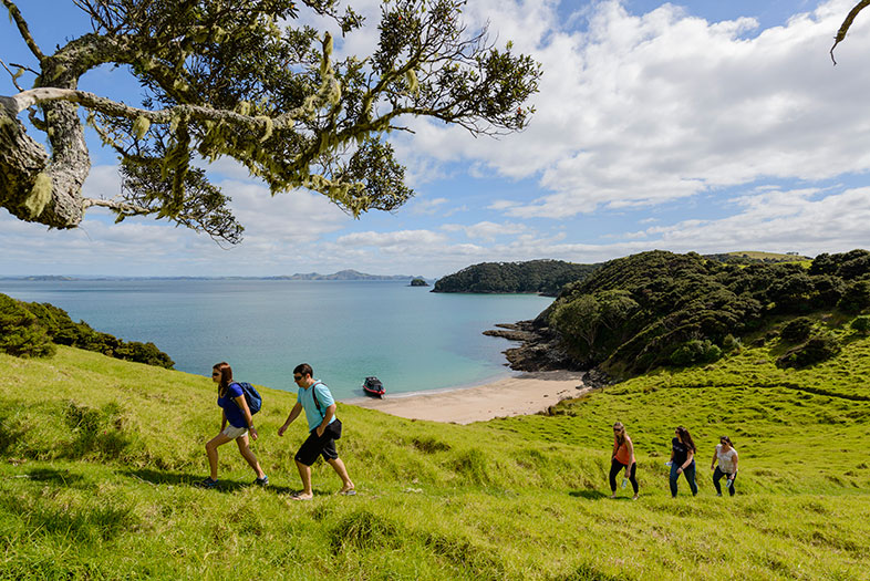 Cliffs & Caves cruise by Fullers GreatSights - Bay of Islands