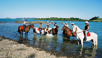 horse trekking paddling