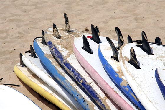 Surfing Bay of Islands - Fun Water Activities