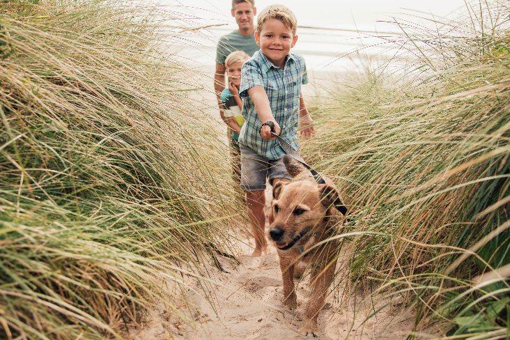 Bachcare Boy walking Dog - 732 x 488