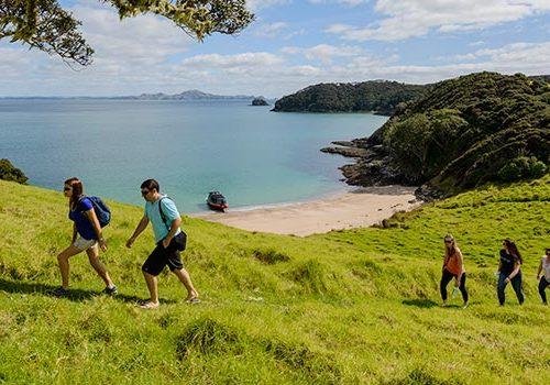 Walks-&-Hikes Bay of Islands