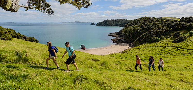 Walks & Hikes - Land Activities Bay of Islands
