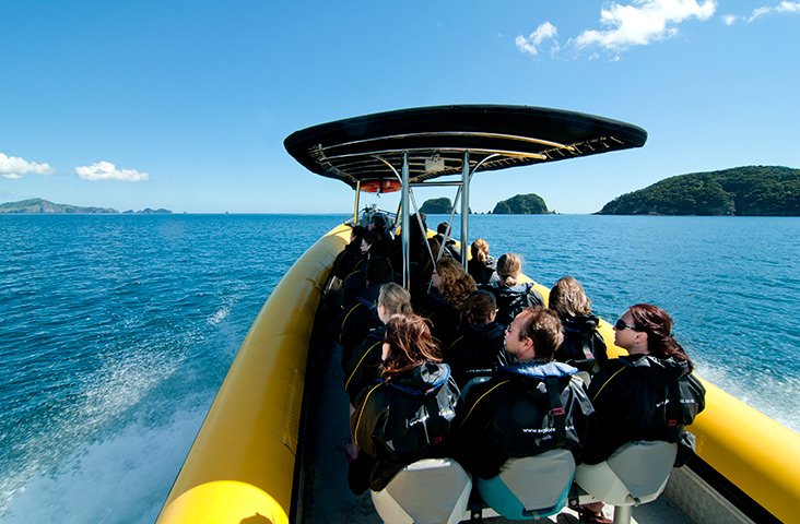 cruise tour group bay of islands