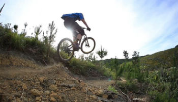 Paihia Mountain Bike Rentals Bay of Islands