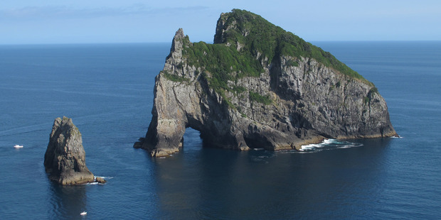 Motukokako Island. Photo - Bay of Islands