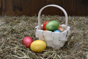 Easter Egg Hunt, Bay of Islands