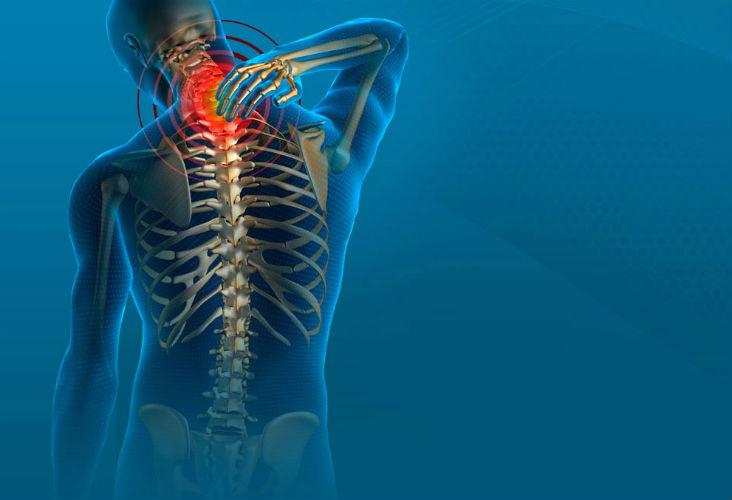 Paihia Chiropractic