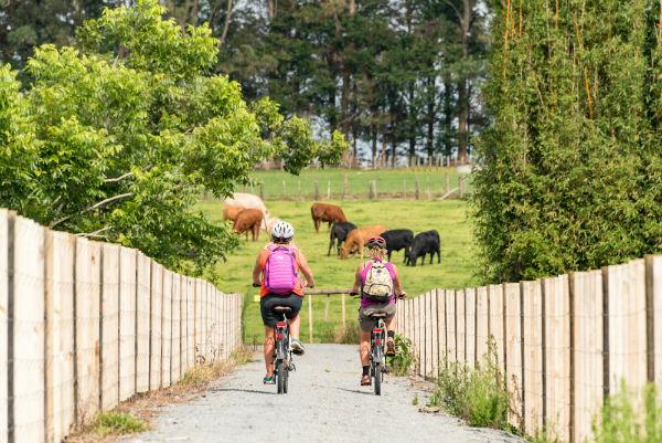 Twin Coast Cycle Trail