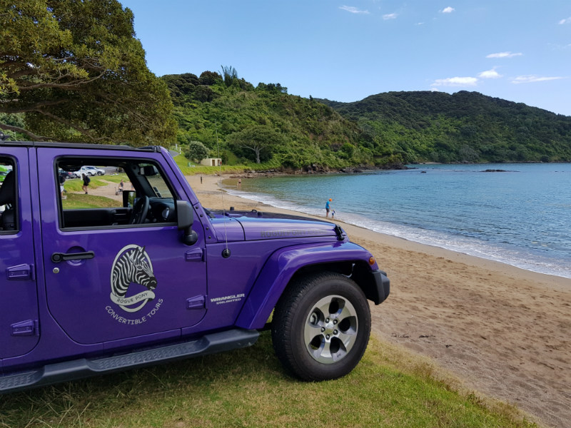Rogue Pony Tours, Bay of Islands