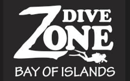 Dive Zone logo