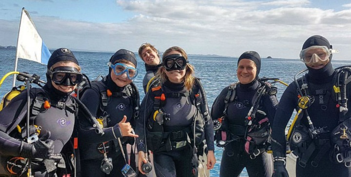 Paihia Dive on an Open Water mission