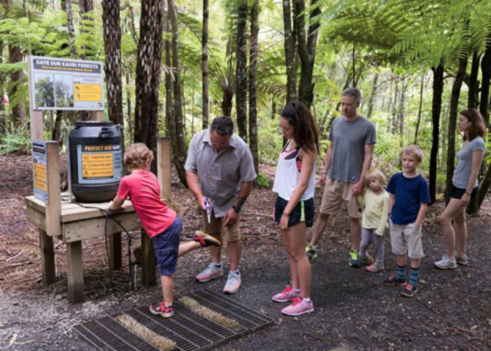 Kauri Die Back cleaning station