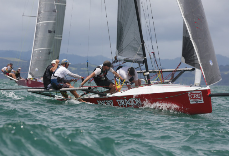 Bay of Islands Sailing Week