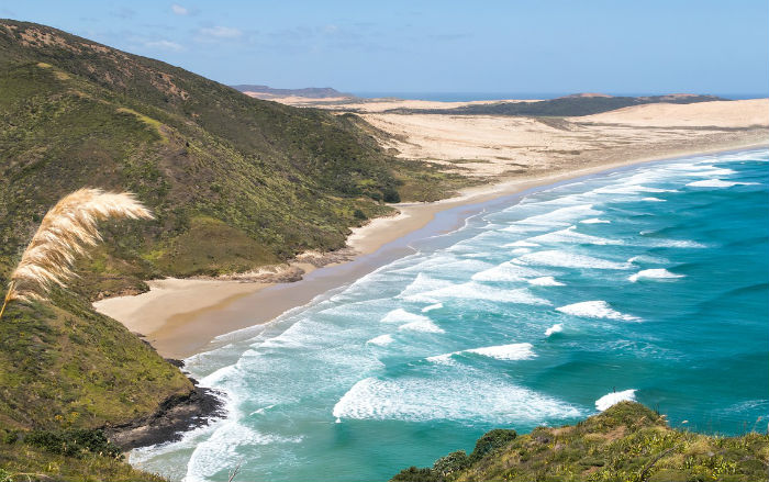 Stunning views of Cape Reinga