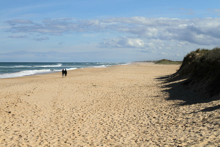 South-west_along_90_Mile_Beach_Seaspray_Vic_jjron_31_700x479