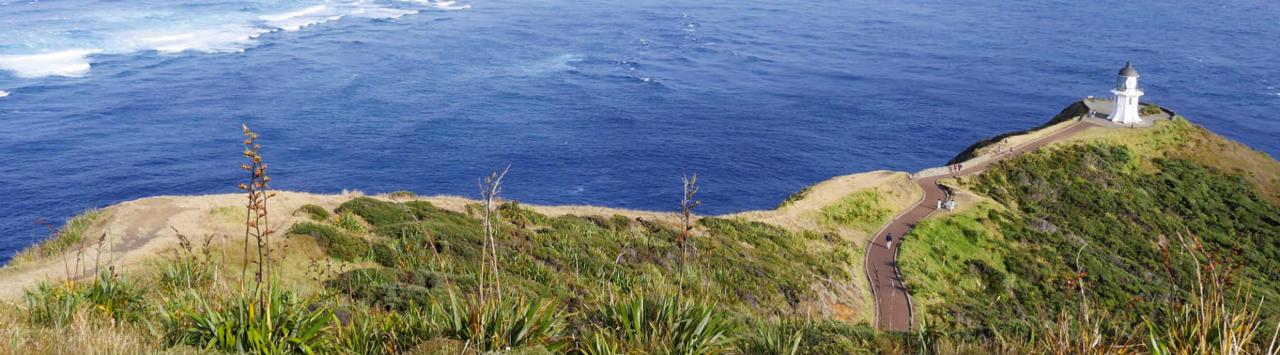 Things to do and see at Cape Reinga