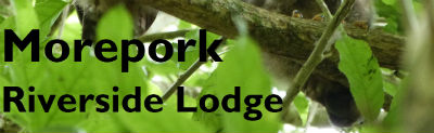 Morepork Lodge Logo