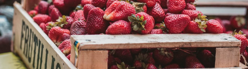 Visit Bay of Islands - top farmers markets