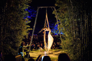Visit Bay of Islands The Biggest Littlest Circus