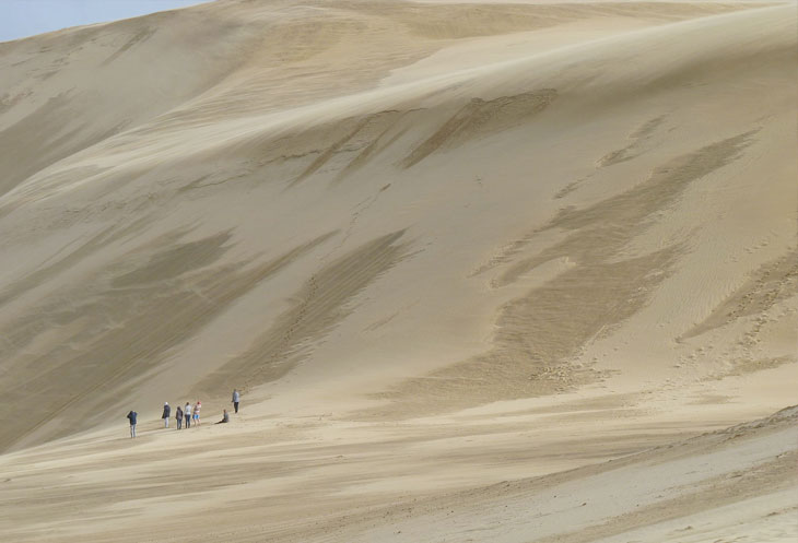The Te Paki sand dunes near Cape Reinga tower 150m into the air. Photo credit: Michal Klajban / CC BY-SA (https://creativecommons.org/licenses/by-sa/4.0)