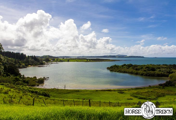 A landscape view of Wairoa Bay