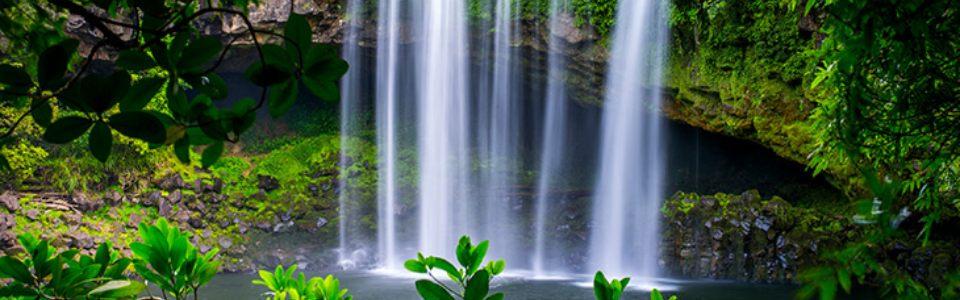 Rainbow Waterfall Bay of Islands