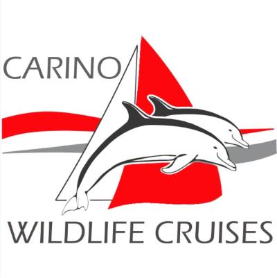 Carino Wildlife Cruises - logo